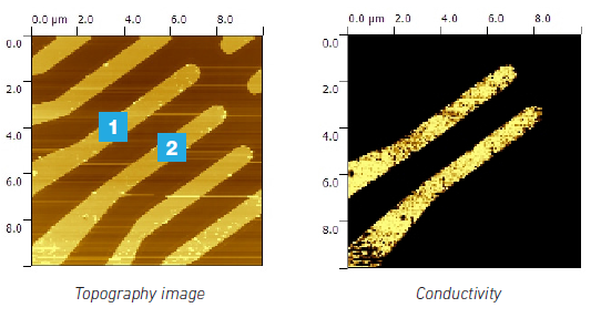 Conductive AFM Images
