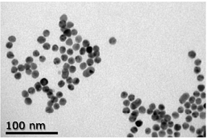 TEM Image - Gold Nanoparticle