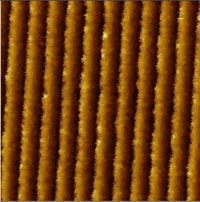 AFM image of grating irregularities 4 µm x 4 µm