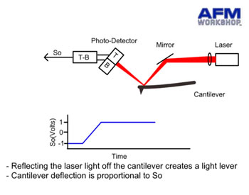 Light Lever and Atomic Force Microscope Cantilever Deflection